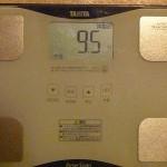 20日目の体重と体脂肪率の結果|30日プランクチャレンジをやってみた!(体幹腕立て/フロントブリッジ)