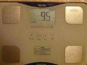 20日目体脂肪率